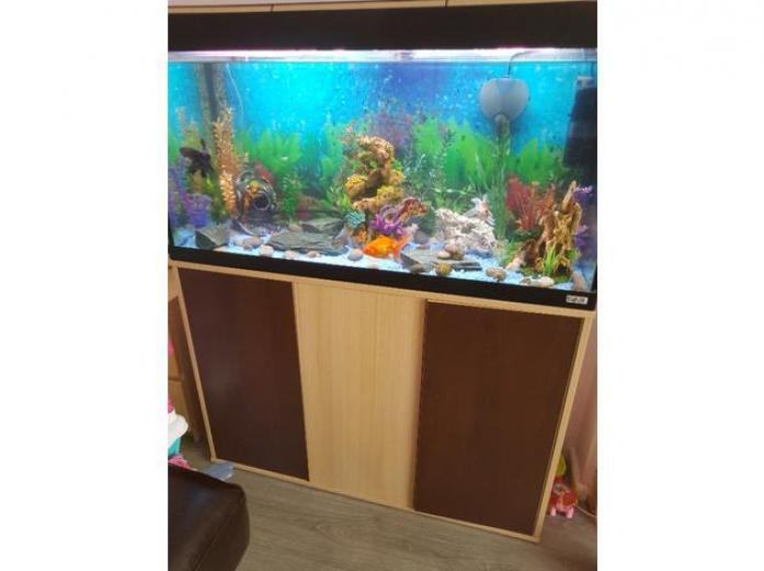 Fluval Roma 200 aquarium tank and cabinet